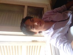 thaidat